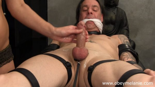 Who loves ballbusting collection 1080p – Obey Melanie