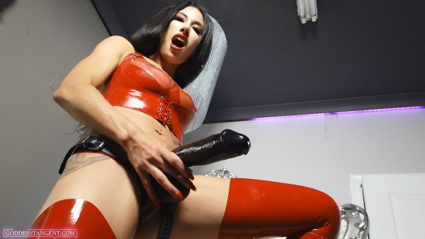 Cock Addict 1080p – Goddess Tangent