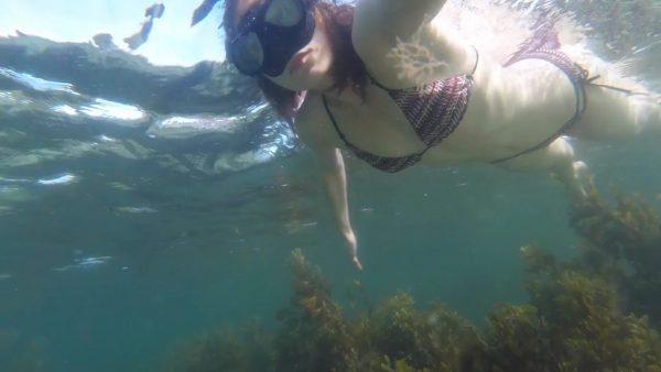 LittleTabby – Peaceful Underwater