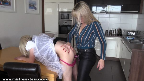 Mistress Tess – Maid For My Cock